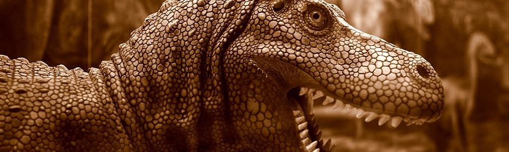 Dinosaur, Yorkshire Museum
